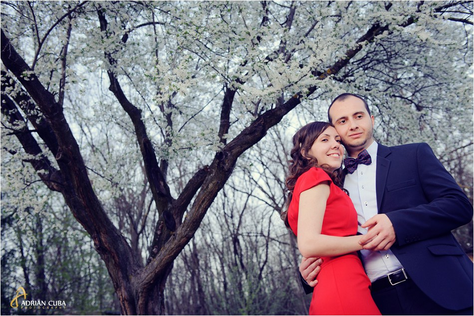 Tineri imbratisati sub un cires inflorit la sesiune foto logodna Iasi.